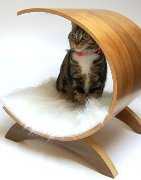 elegant-cat-house